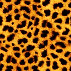 Drawn leopard skin background twitter Wallpaper Background  Light Faux