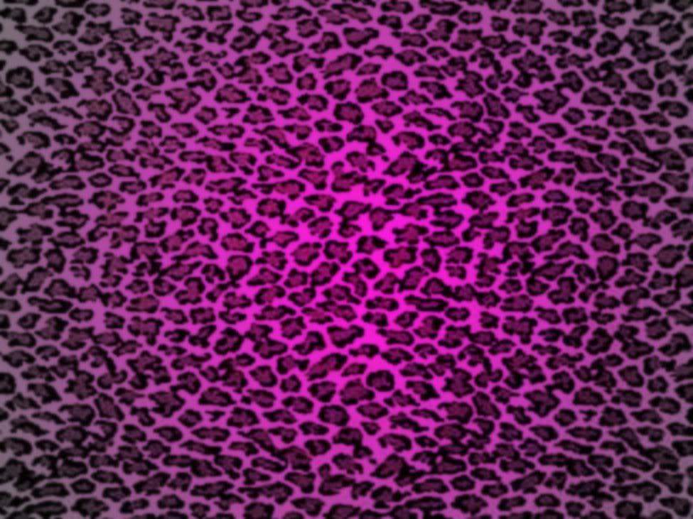 Drawn leopard skin background twitter Desktop Wallpaper Cave ~ Backgrounds