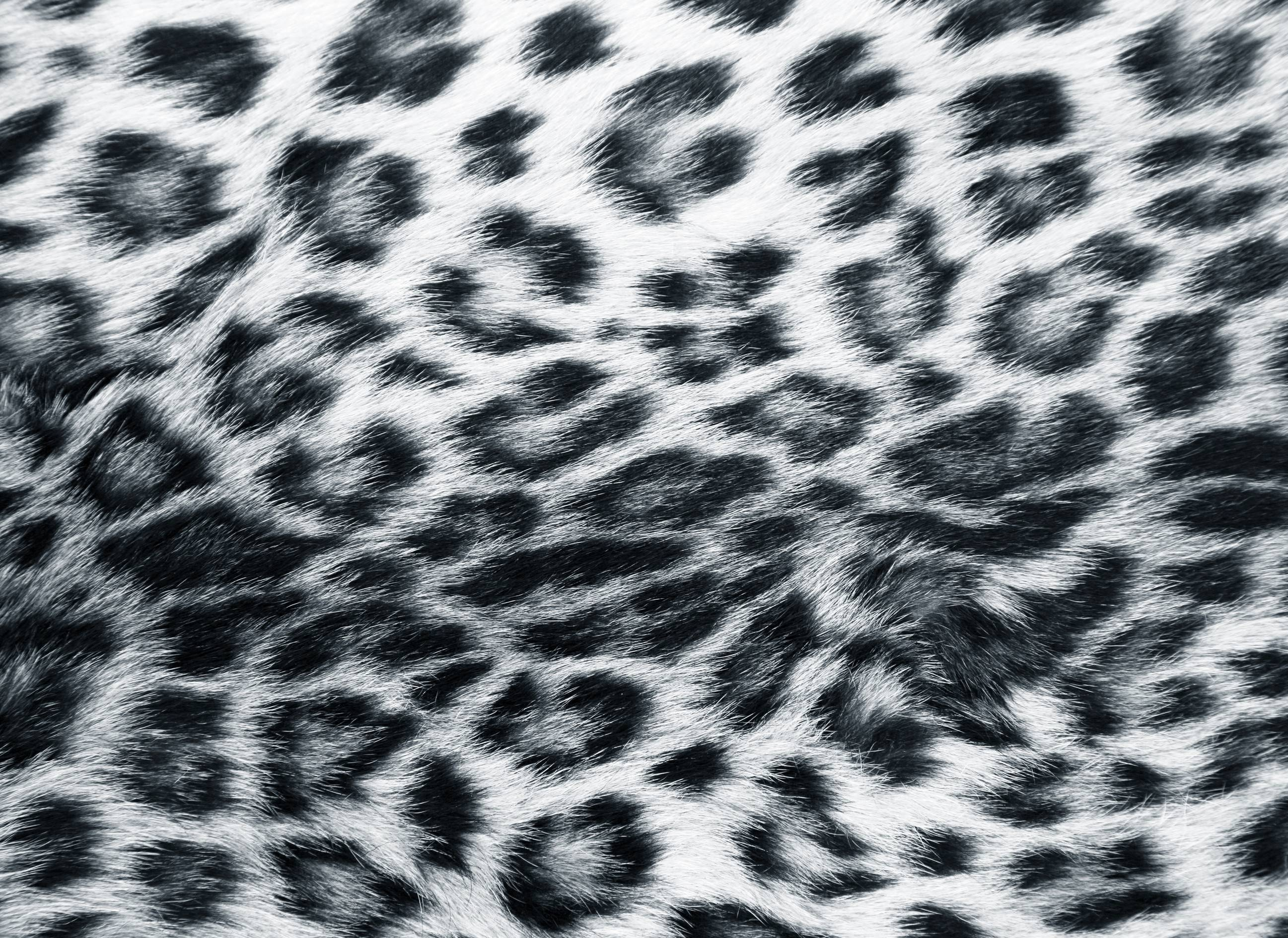 Drawn leopard skin background twitter Desktop Wallpaper Cave For Backgrounds
