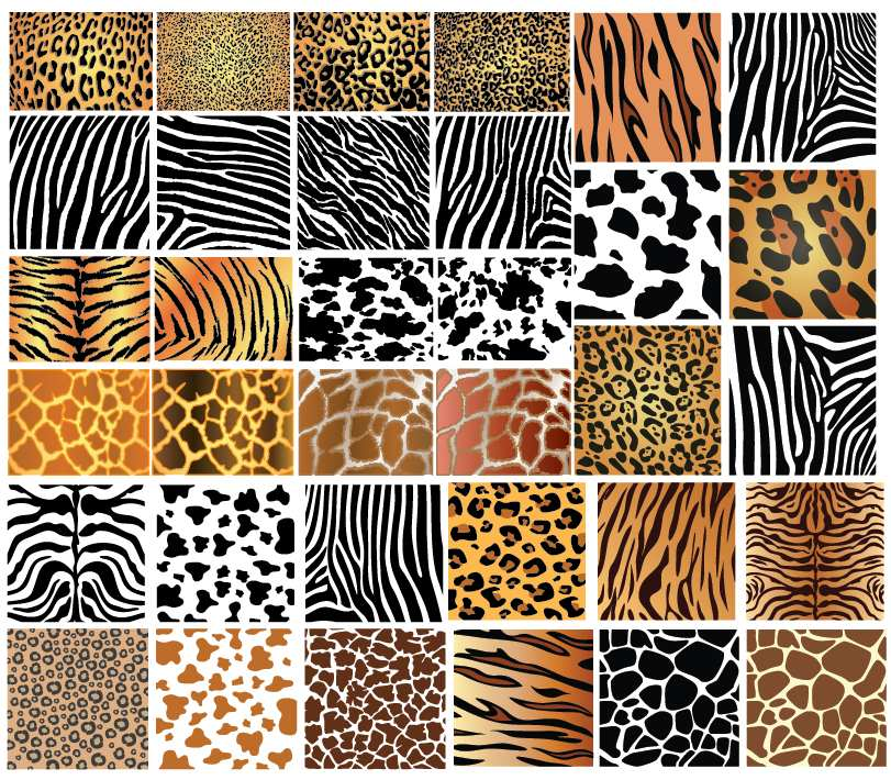 Leather Textures clipart reptile Skin Animal printables Patterns graphics