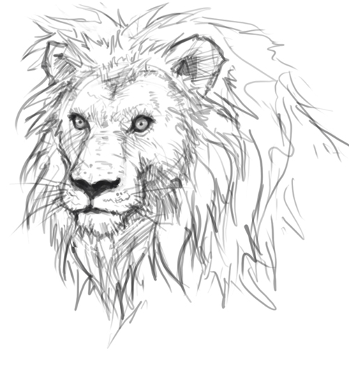 Drawn lion And How painting online lion