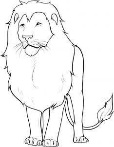 Drawn lion How draw Draw FREE Lion