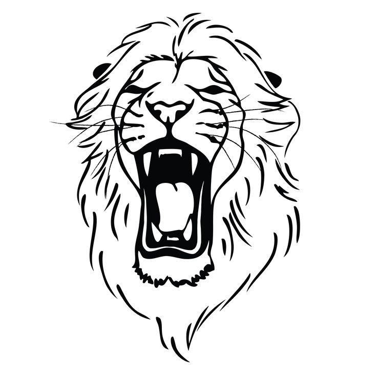 Drawn simple lion Free lion ideas Drawing Best