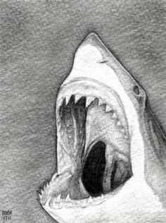 Drawn bubble charcoal To  Try sharks Search