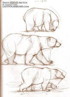 Drawn polar  bear family drawing Polar Beautiful Photography живопись Bear