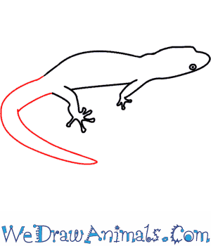 Drawn lizard To Tutorial Draw How A