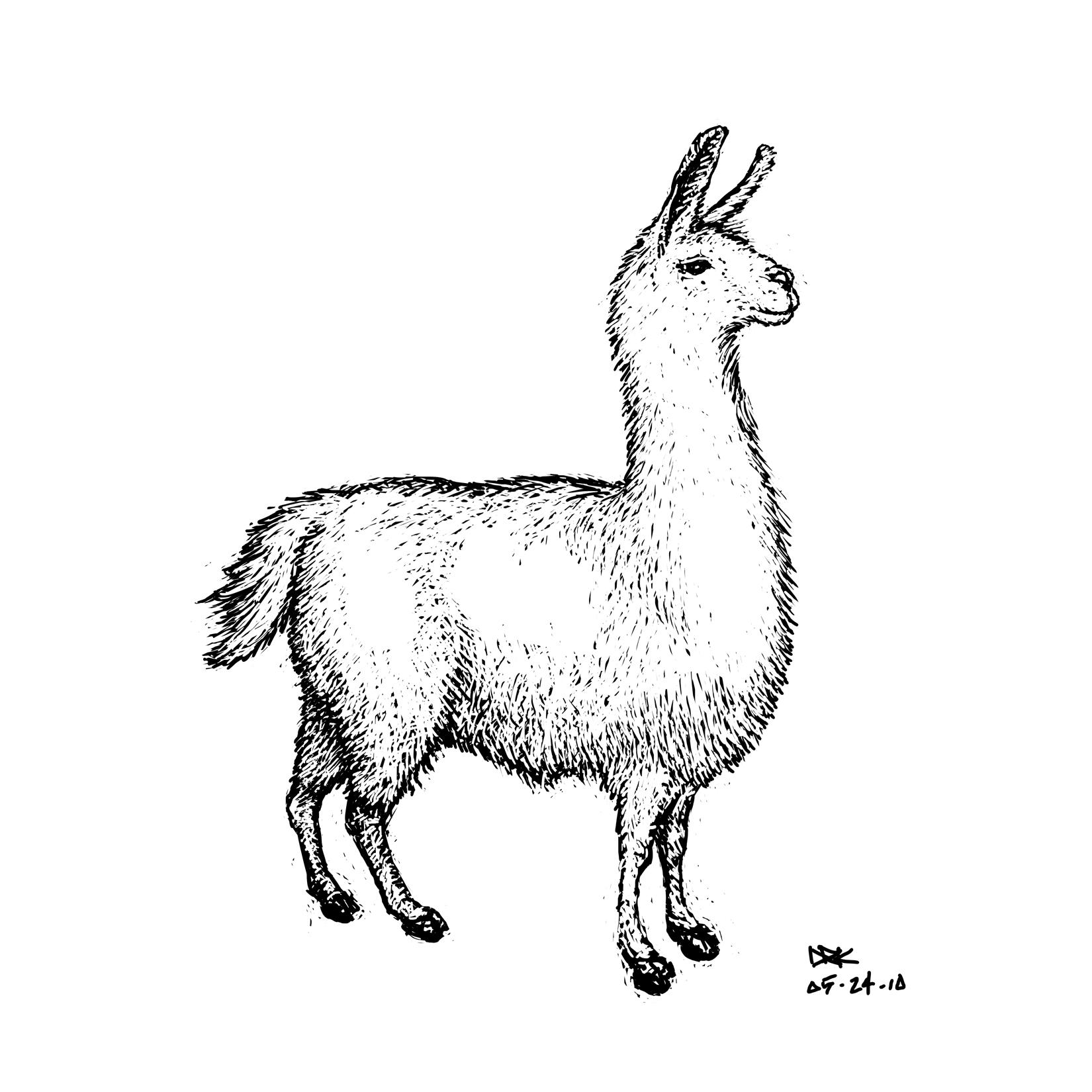 Drawn llama Drawing 30 (Llama Day Day2: