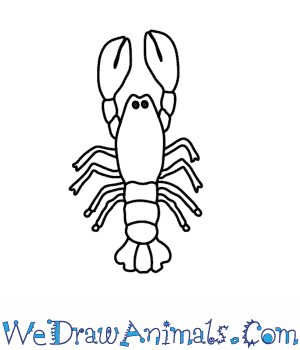 Drawn lobster Lobster Draw a to How