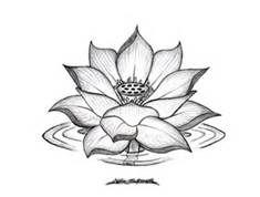 Drawn lotus Drawings Lotus Images Lotus Tattoos