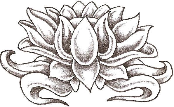 Drawn lotus Clip Lotus Free Art Lotus