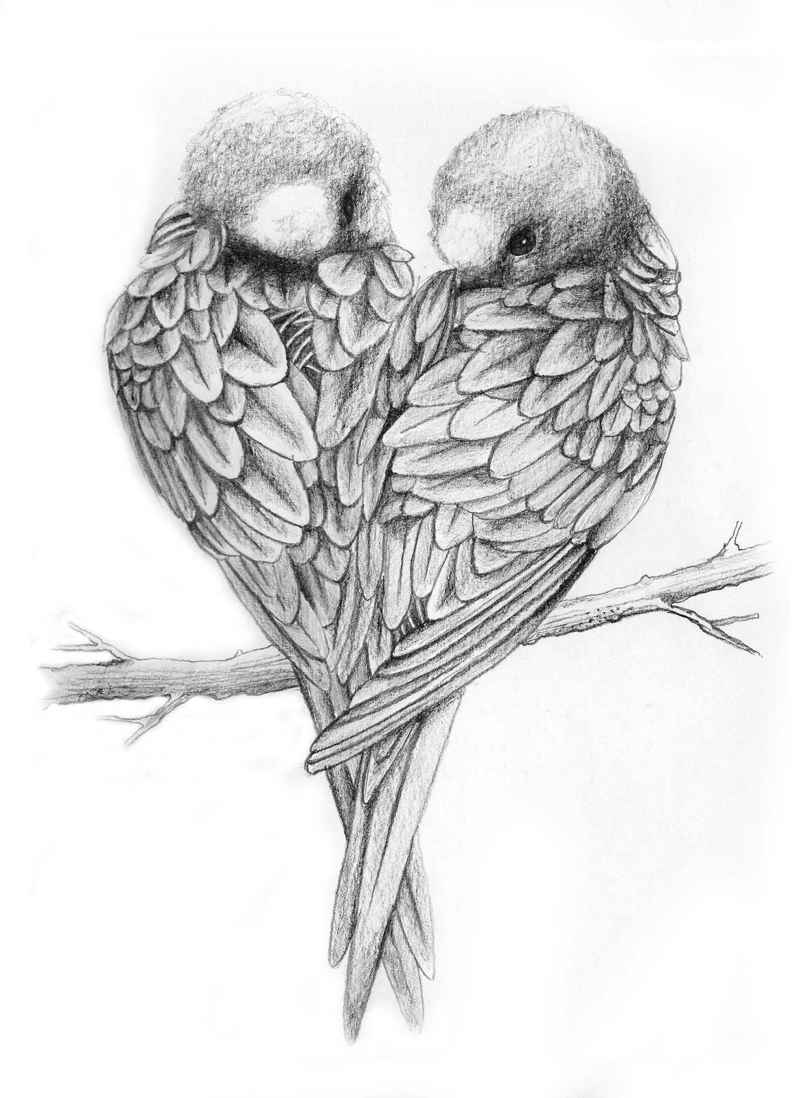 Drawn lovebird Birds Love Drawings Love Drawing