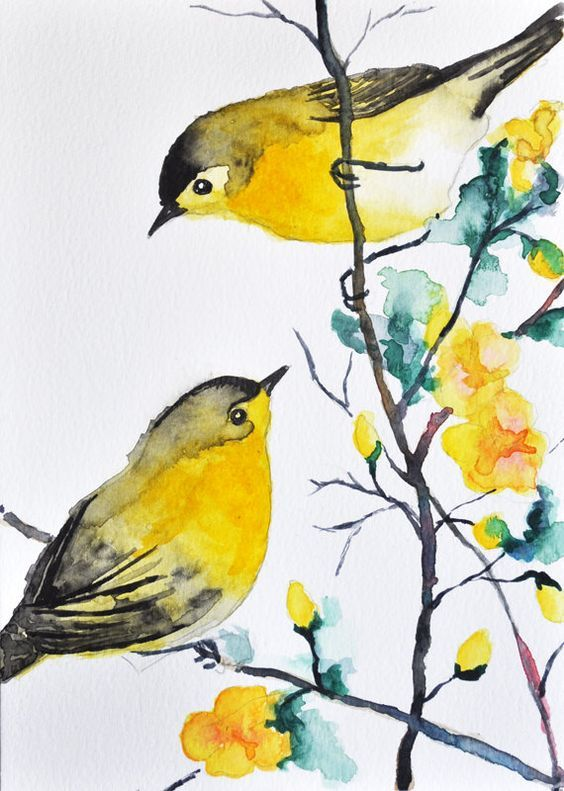 Drawn brds yellow finch Drawings Pinterest 25+ on