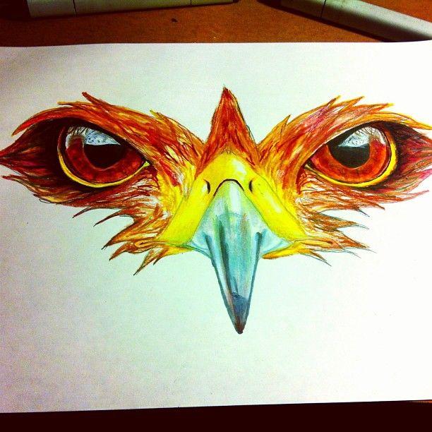 Drawn hawk hawk eye Hawk tattoo 40 #tattoo best