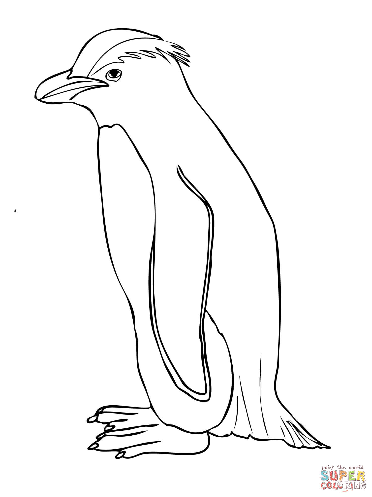 Rockhopper Penguin clipart Pages Penguins Coloring Pages coloring