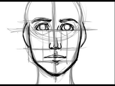 Drawn portrait basic Proportions Basic How YouTube Face