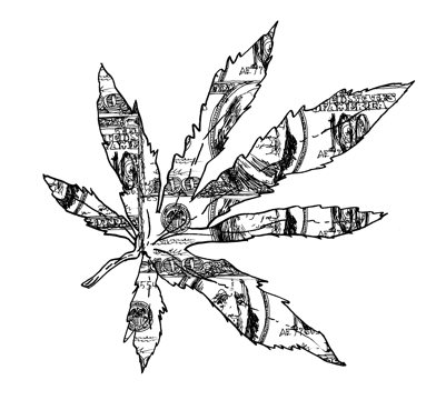 Drawn pot plant high weed The Heart Ellis by of