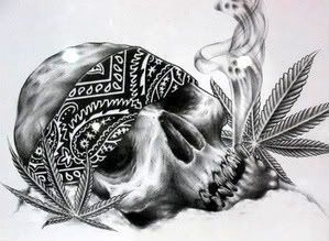 Drawn pot plant skull Tattoo Tattoo 25+ Rangiora 5
