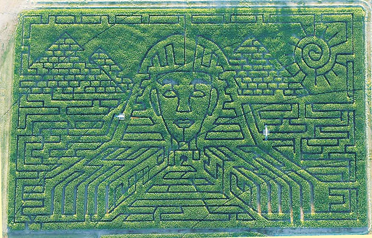 Drawn maze cereal Like Maize: OR Business Maze