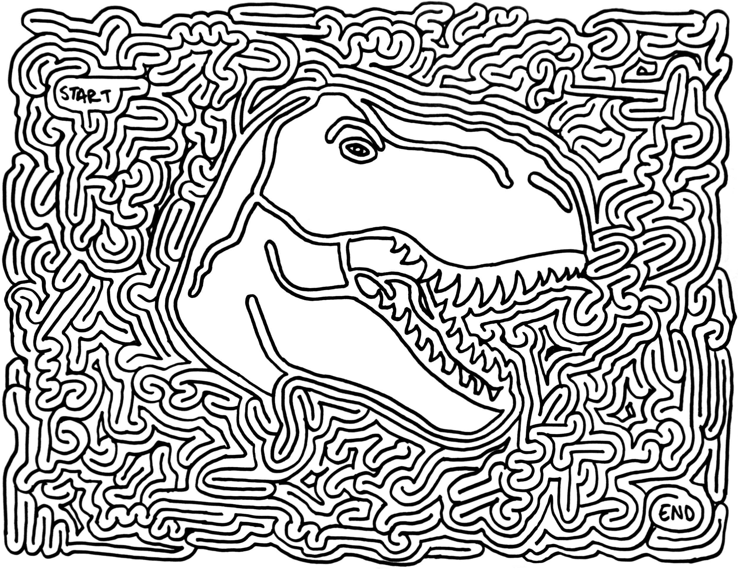 Drawn maze tricky Maze Pinterest  Printable Dinosaur