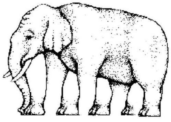Drawn m.c.escher elephant Impossible Escher C Elephant C