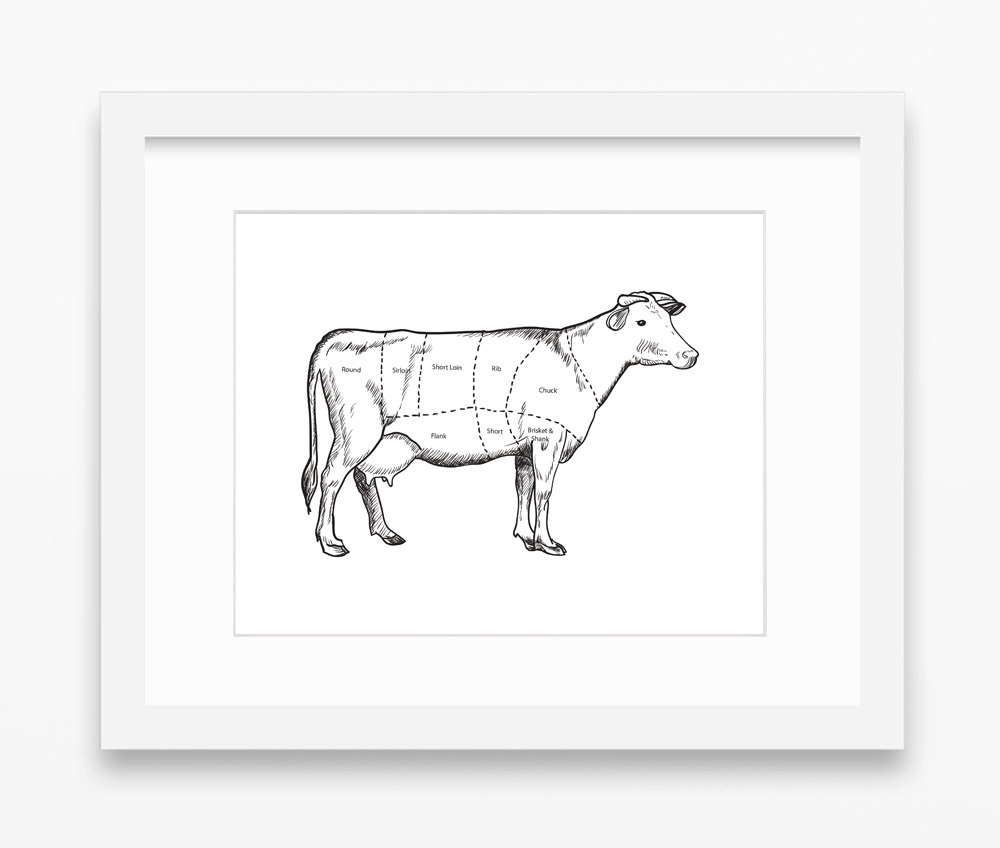 Drawn cattle printable #11