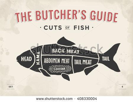 Drawn meat Butcher Fish hand scheme Vintage
