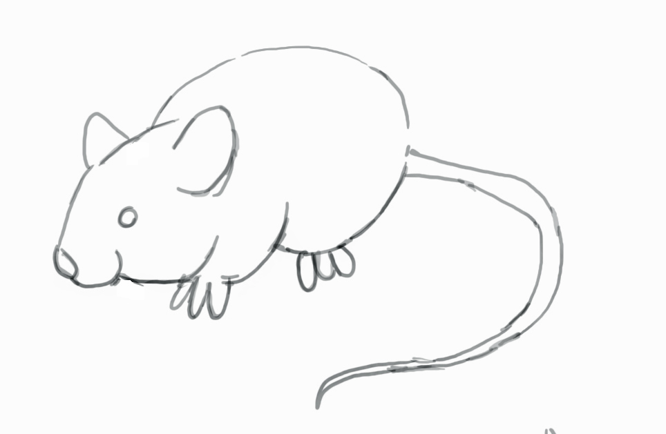 Drawn rat easy Mouse Shade Step How by