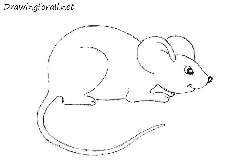 Drawn mice Drawing mouse DrawingForAll Beginners For