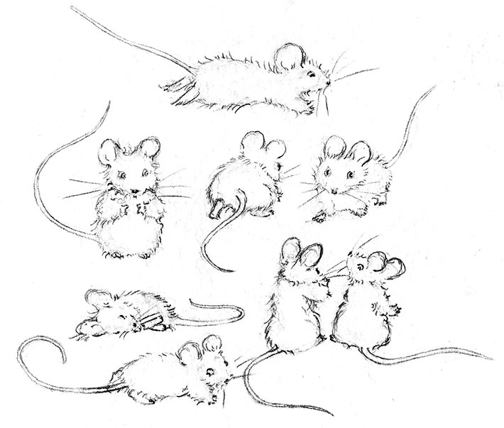 Drawn rodent cute Poses to a Features How