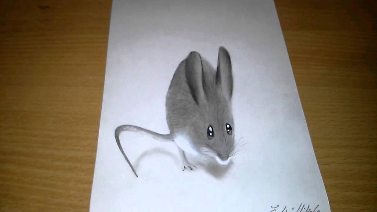 Drawn rodent 3d hd Realistic 3D YouTube drawing 3D