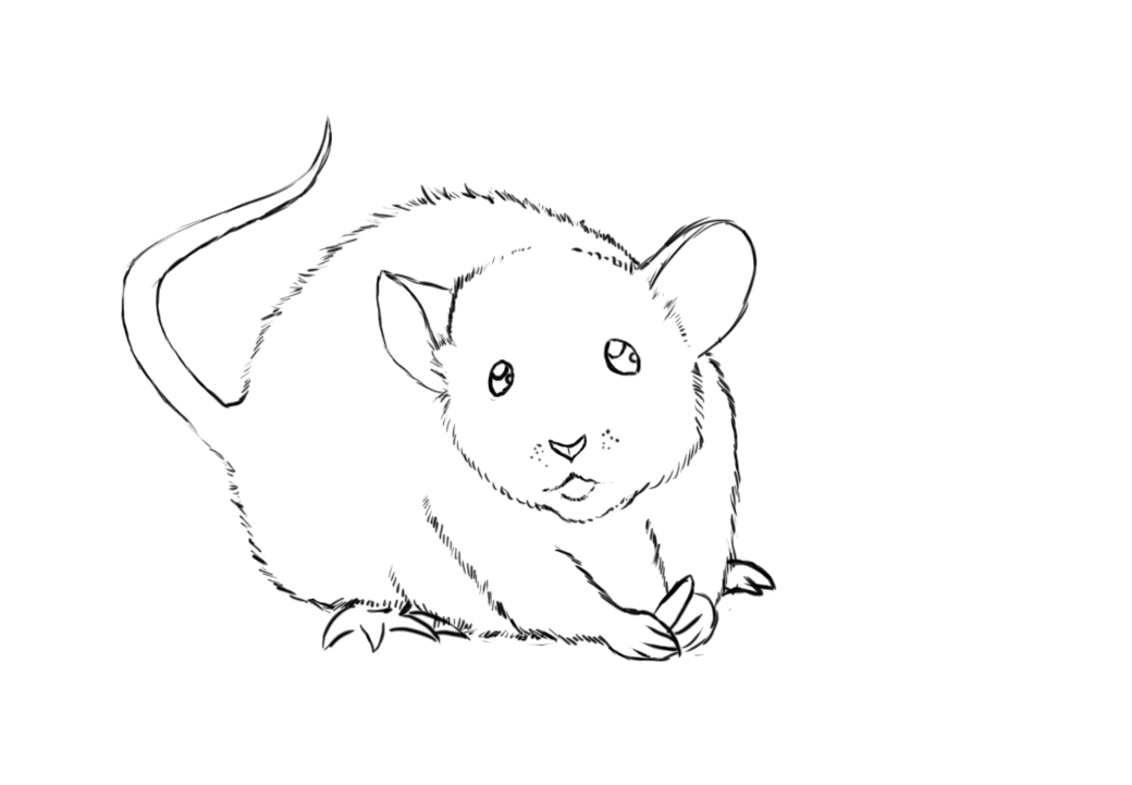 Drawn mice Step Draw with next lines