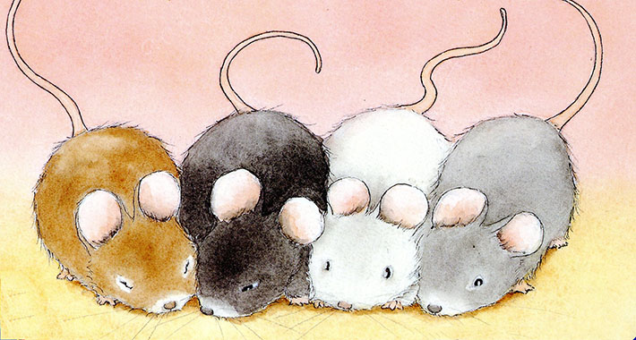 Drawn rodent adorable How Mouse a to With