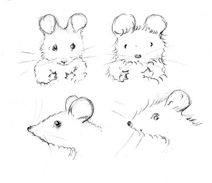 Drawn rodent mouse head To How Draw Mouse Mouse