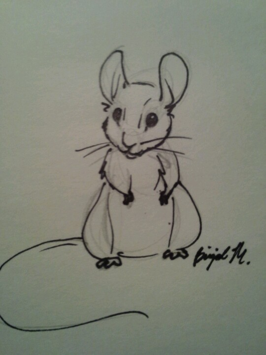 Drawn rodent doodle Mouse Pinterest BrigidM Mice Artwork