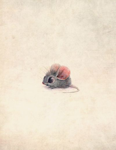 Drawn rodent awesome Art Creature Pinterest 154 images