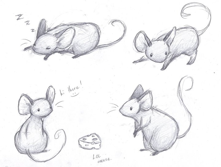 Drawn rodent illustration Mice com Sketches on by