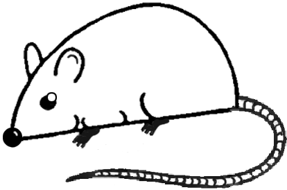 Drawn rodent easy Mouse Guide To Ugly Drawings