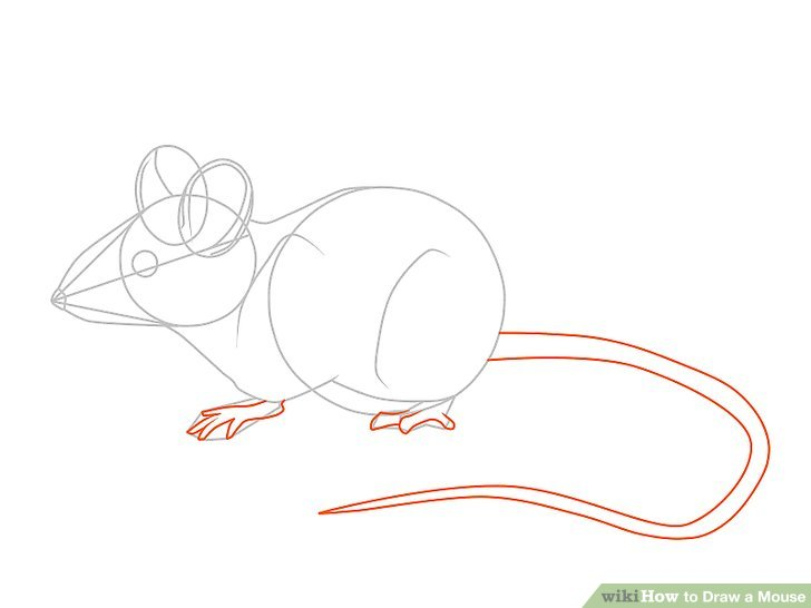 Drawn rat rodent 3 to a Draw Mouse