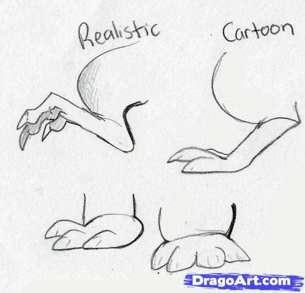 Drawn rodent step by step How  to to Animals