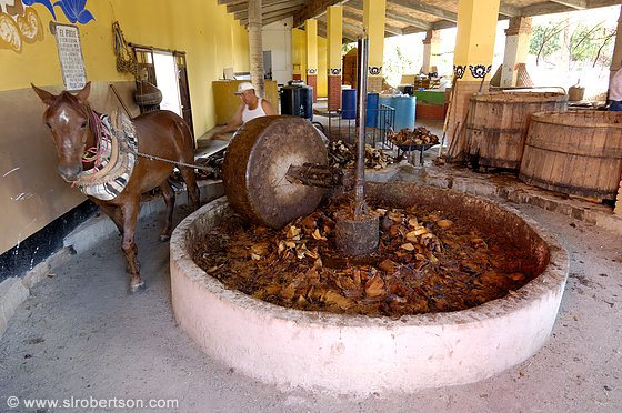 Drawn mill Mill agave Roasted crushed production