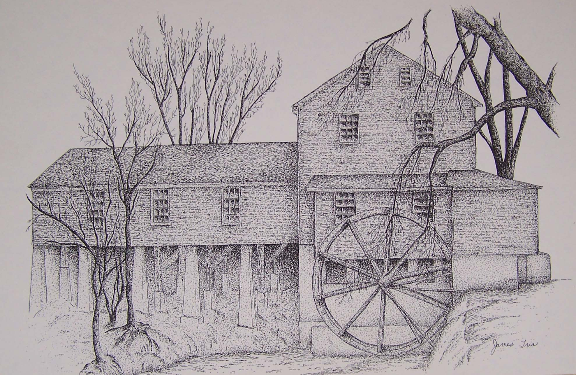 Drawn mill And Pen Pigeon and Ink