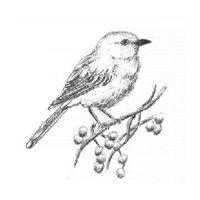 Drawn mockingbird Best Mockingbird Pinterest tattoo ideas