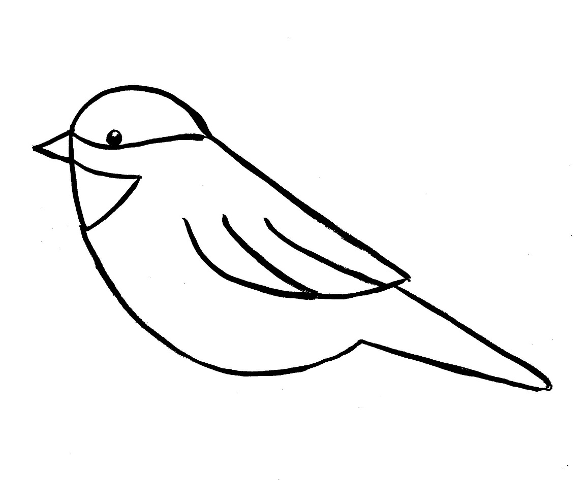 Drawn sparrow simple Drawing chickadee Bell 8 Step