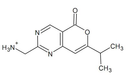 Drawn molecule Flexibly to and protein molecule