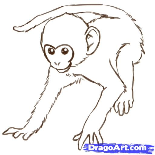 Drawn monkey Zeichnen how drawings to draw