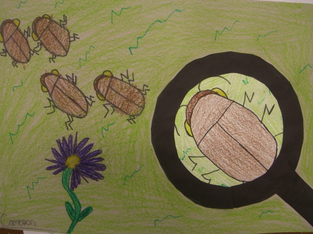 Drawn bugs kid Kid Bug Insects Activities Theme!
