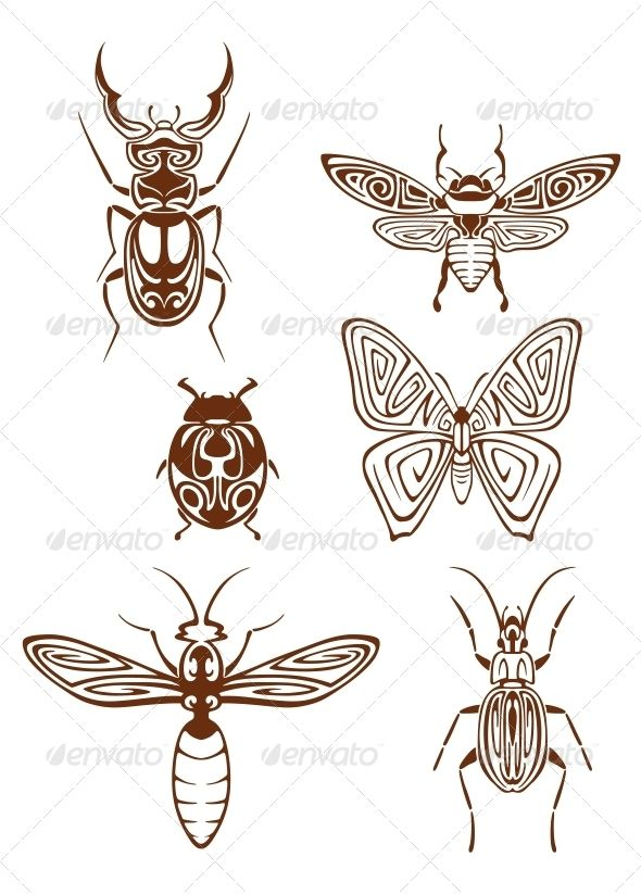 Drawn bug tribal Tribal Pinterest outs images Insect