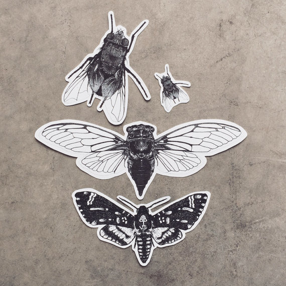 Drawn bugs dotwork Pack Moth Cicada Stickers Insect