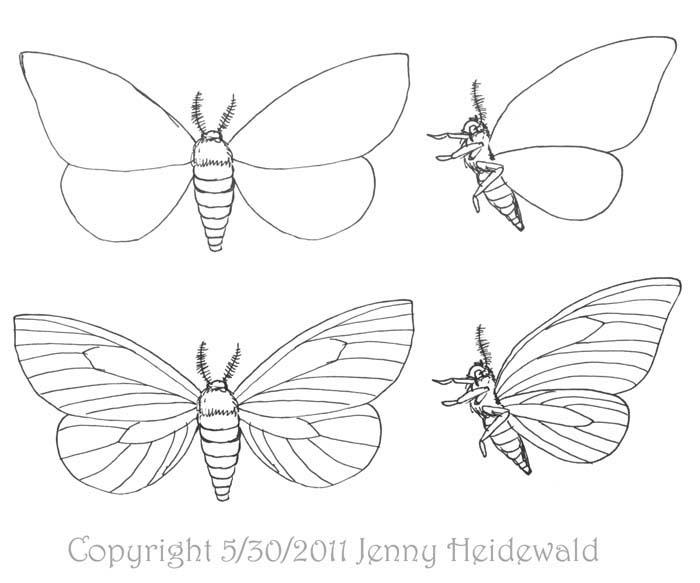 Drawn moth Over a EMG moths as