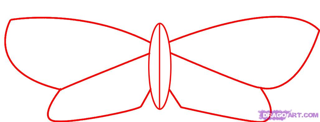 Drawn moth simple 1 how step Draw to